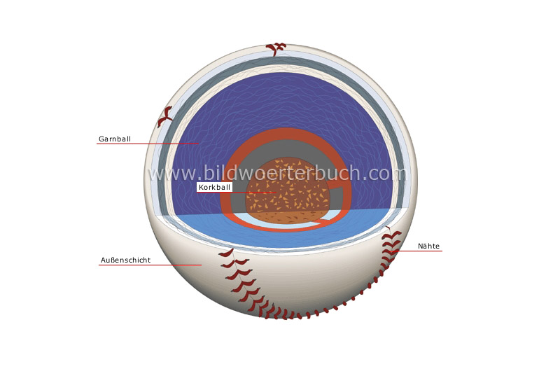 cross section of a baseball image