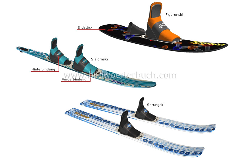 examples of skis image