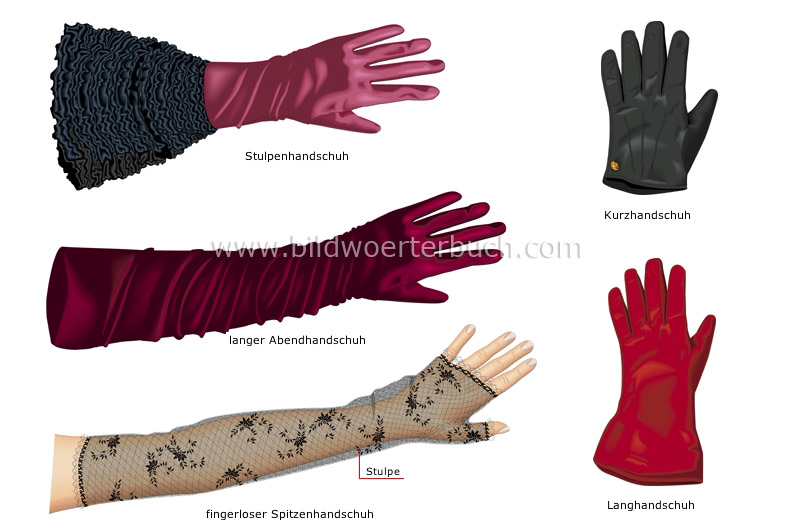 women's gloves image