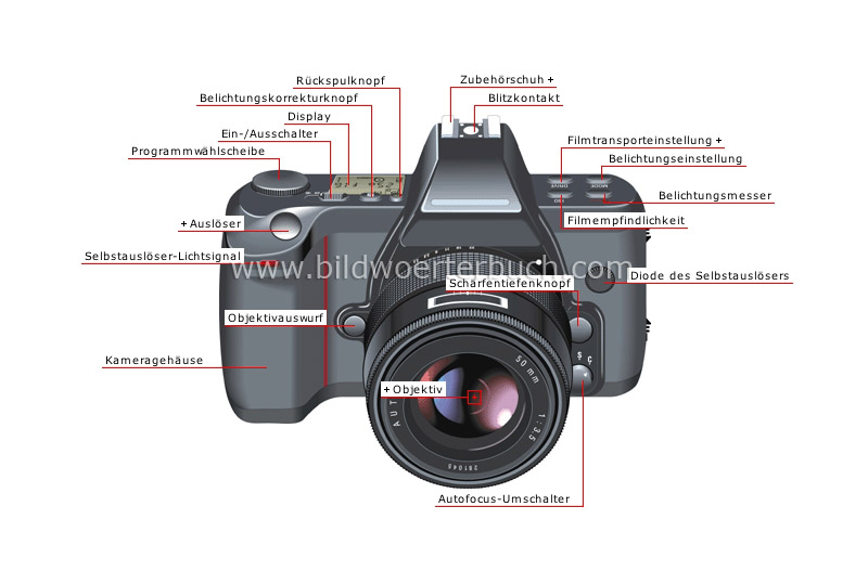 single-lens reflex (SLR) camera: front view image
