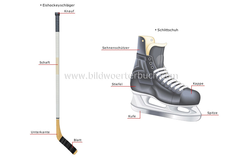 ice hockey player image