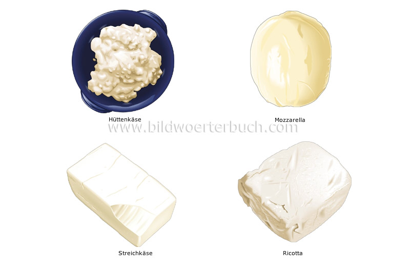 fresh cheeses image