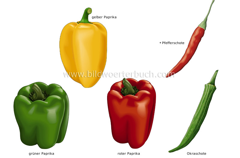 fruit vegetables image
