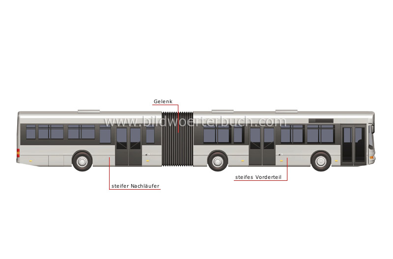 articulated bus image