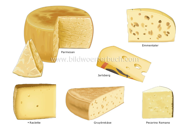 pressed cheeses image