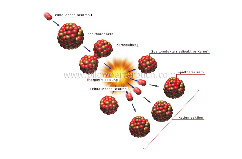 nuclear fission image