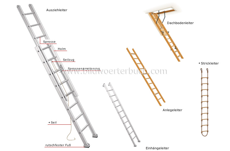 ladders and stepladders image