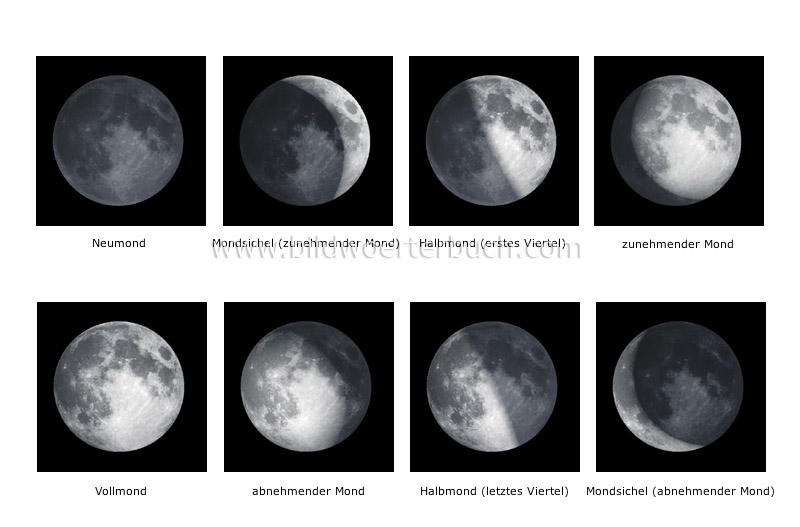 phases of the Moon image