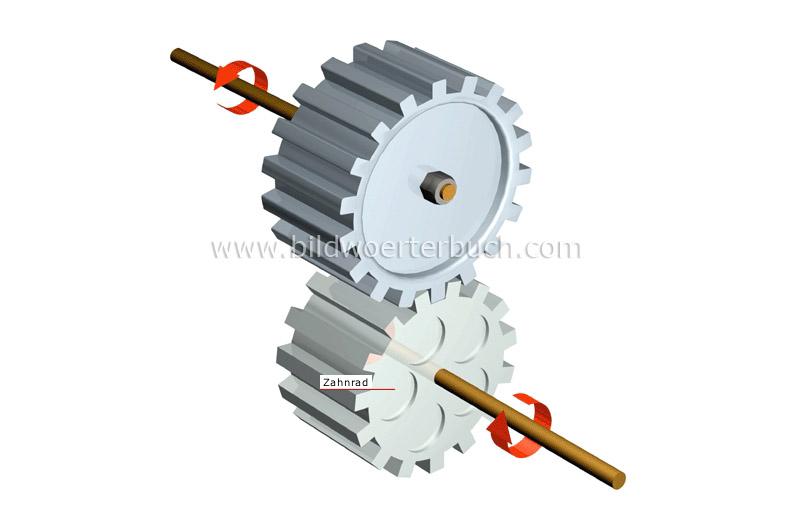 Wissenschaft :: Physik: Mechanik :: Zahnradgetriebe :: Stirnradgetriebe Bild - Bildwörterbuch
