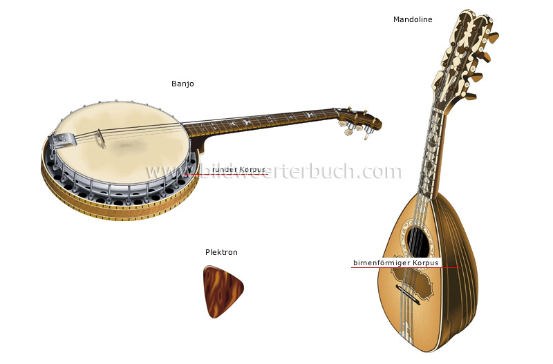 traditional musical instruments image
