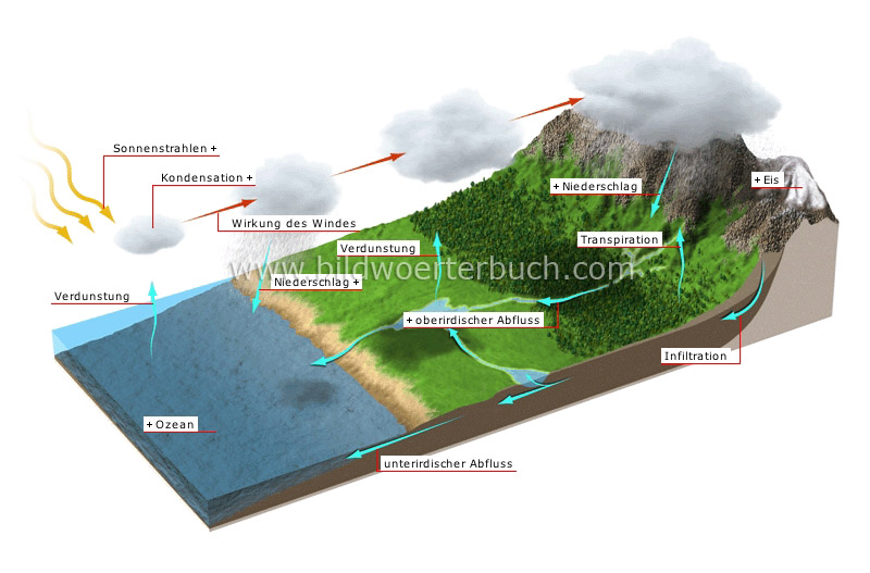 hydrologic cycle image